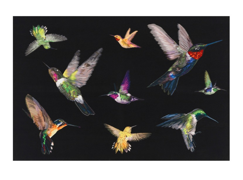 dc_amq_hummingbird-wallhanging_6x4_1