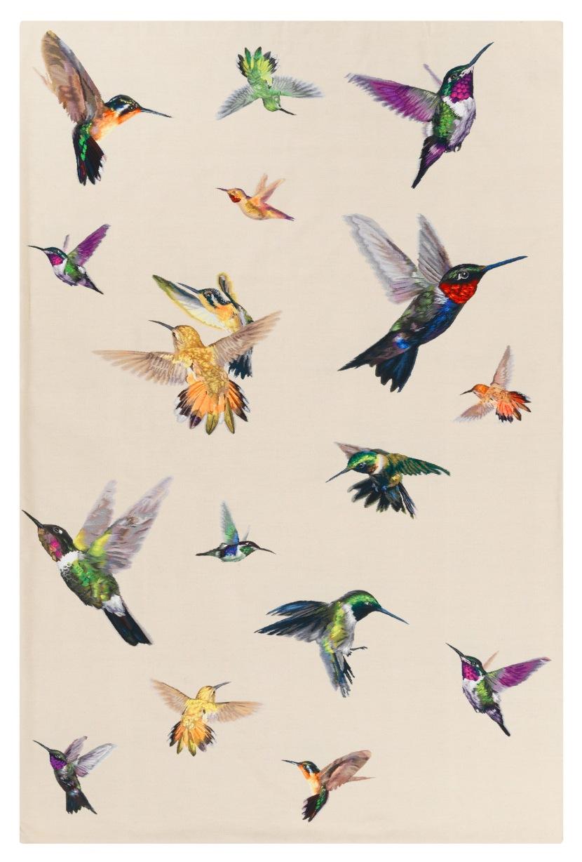 dc_amq_hummingbird_ivory_f