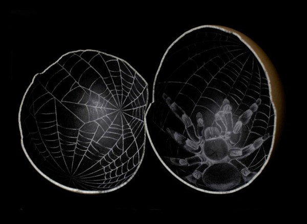 Scott-Campbell-Ostrich-Eggs-2-600x437