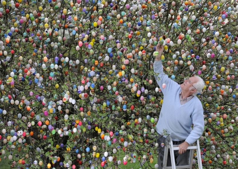 gallery-for-gt-easter-egg-tree-2015-t-happy-holiday-images-2015