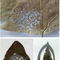 Leaf it..